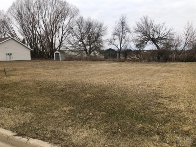 1329 Patricia, Grinnell, Iowa 50112, ,Land,For Sale,Patricia,35016412