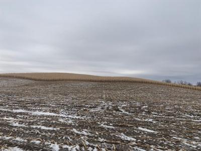 2538 Q, Clutier, Iowa 52217, ,Farm,For Sale,Q,35018012