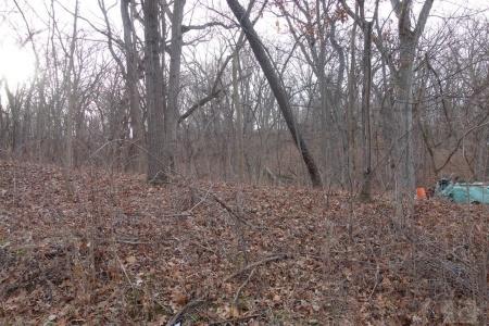 5072 Delta, Brooklyn, Iowa 52211, ,Land,For Sale,Delta,35018077